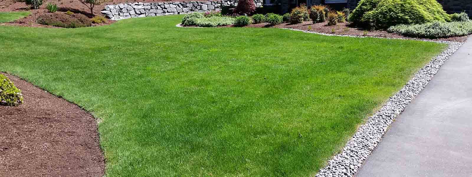 The Lawn Barber Land Clearing & Grading Long Island